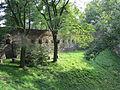 Toszek, zamek, fosa (1).JPG