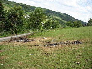 2014 Olsberg mid-air collision - Aircraft parts were strewn over a wide area.