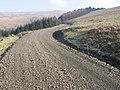 Track to Cogshead - geograph.org.uk - 691941.jpg