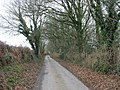 Tree-lined minor road between Llannor and Pont Bodfel - geograph.org.uk - 678339.jpg
