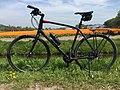Trek FX-S5 at rest in the flowerfields (Noordwijkerhout, The Netherlands 2019) (40709603263).jpg