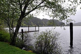 Triangle Lake, Oregon Unincorporated community in Oregon, United States