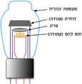 Triode vacuum tube HE.png