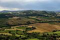Tuscan Landscape 2.JPG