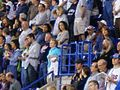 Twins crowd-Metrodome-2006.jpg