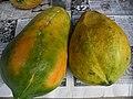 Two papayas.JPG