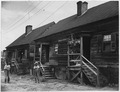 US Housing Authority, Savannah, Georgia Site GA 2-2, the before photo - NARA - 196094.tif