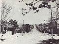 Ulita copilariei lui Sadoveanu din Pascani.jpg