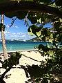 Unnamed Road, British Virgin Islands - panoramio (231).jpg