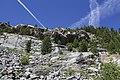 Vadret da Morteratsch - panoramio (36).jpg
