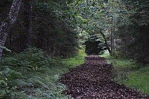 Vana-Vigala - Image: Vana Vigala Hirvepark 05