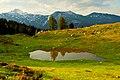 Velika planina1.jpg