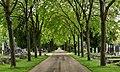 Vienna Zentralfriedhof (49634675392).jpg