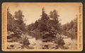 View in Fairmount Park, by Hemple, A. H. (Alfred H.).png
