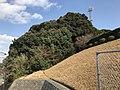 View of Oginoura Shrine near Misakigaoka Station.jpg