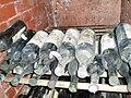 Vintage wine in the cellars of Cojuşna winery.jpg