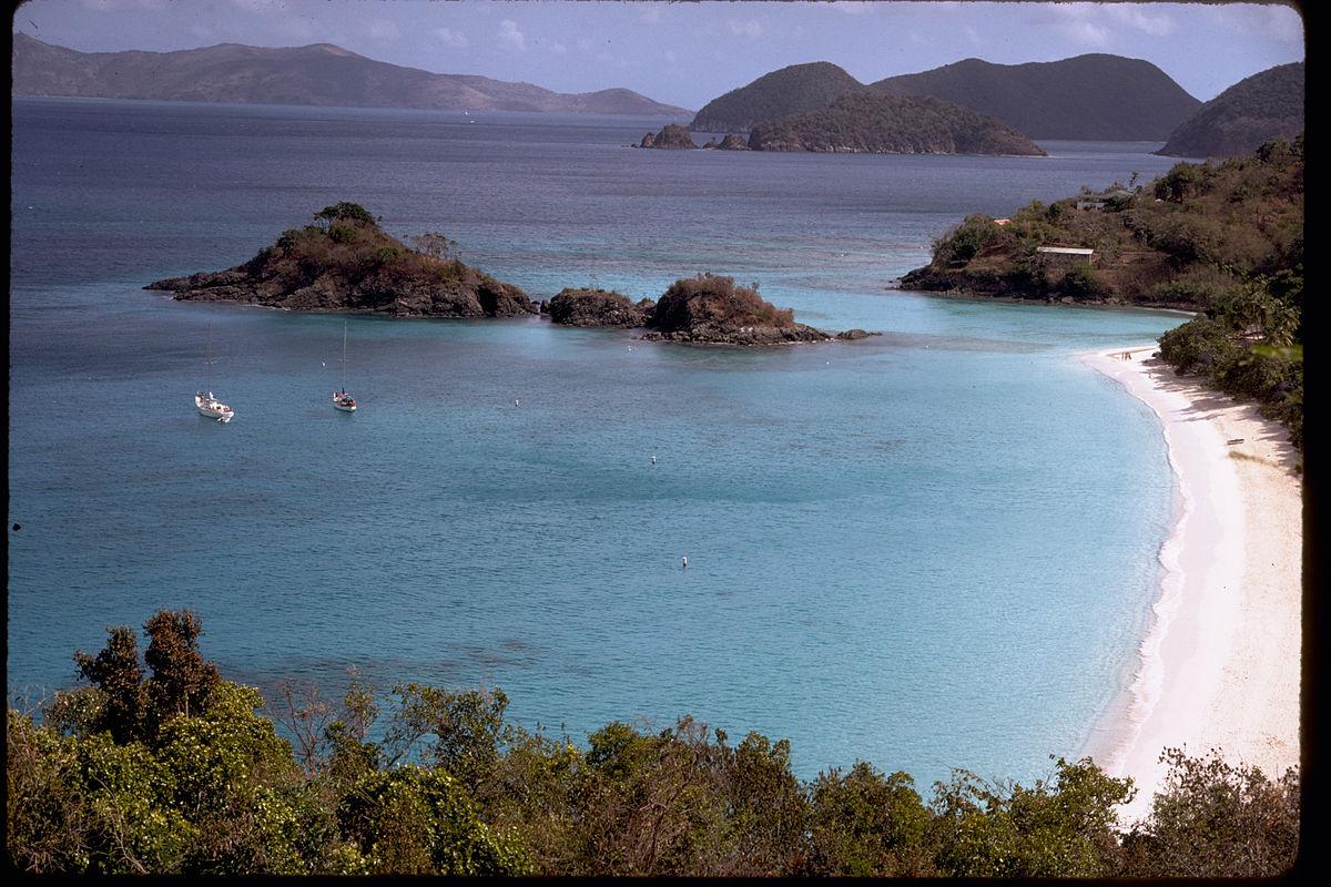 wildlife at virgin islands national park