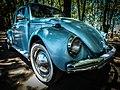 Volkswagen beetle 81.jpg