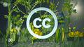 Vorschaubild Creative Commons erklärt (Terra X, ZDF).png