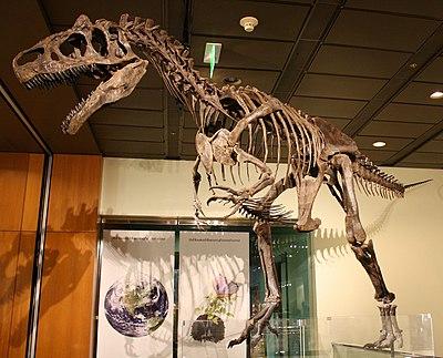 WLA hmns Allosaurus.jpg