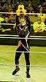 WWE Raw 2015-03-30 18-21-21 ILCE-6000 1834 DxO (17758719174).jpg