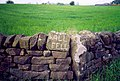 Wall Fell Farm - name of farm etched on rock wall - geograph.org.uk - 274035.jpg