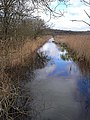 Waterway on Leighton Moss - geograph.org.uk - 1232670.jpg