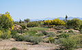 We-Ko-Pa Golf Club (Cholla) no 3.jpg