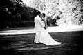 Wedding884.jpg