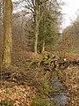 Wolbecker Tiergarten (13).JPG