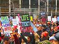 Women's march to denounce Donald Trump, in Toronto, 2017 01 21 -bu (32079078550).jpg