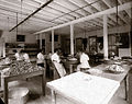 Women working at Brandreth Pill Factory, Ossining, NY, around 1900.jpg