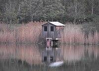 Wooden house.jpg
