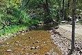 Woods Point Goulburn River 003.JPG