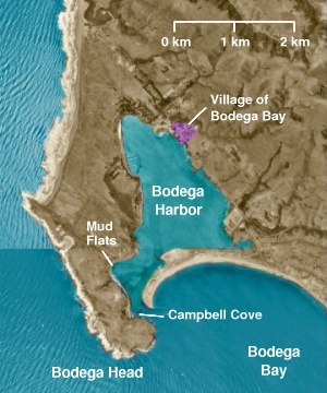 Bodega Bay, California - The village of Bodega Bay on Bodega Harbor