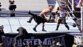 WrestleMania 31 2015-03-29 16-36-54 ILCE-6000 6789 DxO (17809628525).jpg