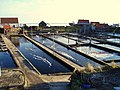 YERSEKE - panoramio (3).jpg