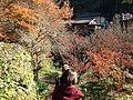 Yabakeimachi Oaza Shinyaba, Nakatsu, Oita Prefecture 871-0422, Japan - panoramio (6).jpg