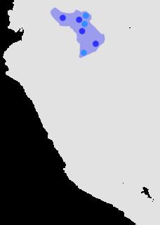 Zaparoan languages language family
