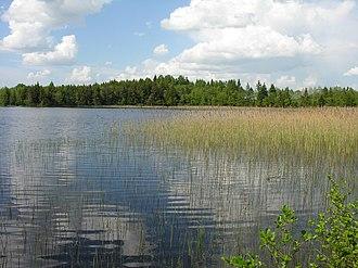 Kelmė District Municipality - Žiaunė lake