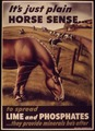 """It's Just Plain Horse Sense to Spread Lime and Phosphates - NARA - 514654.tif"