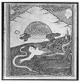 """The Tortoise"", Folio from an `Aja'ib al-Makhluqat (Wonders of Creation) of Qazwini MET 136888.jpg"
