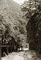 Áji-völgy, az Ördög-hídja nevű sziklaképződmény. Fortepan 95591.jpg