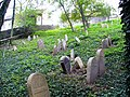 Židovský hřbitov Písková Lhota celkový pohled 1.JPG