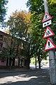 Бук червоний, на вул. Театральній, 24.jpg