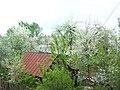 Весна в городе Серпухов - panoramio.jpg