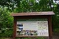 Голосіївський ліс DSC 0567.jpg