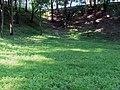 Гомель. Парк. У Лебяжьего озера. Фото 72.jpg