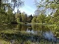 Дворцовый парк Гатчины-Palace Park in Gatchina - panoramio (4).jpg