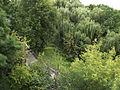Житомир. Берег реки Тетерев..JPG
